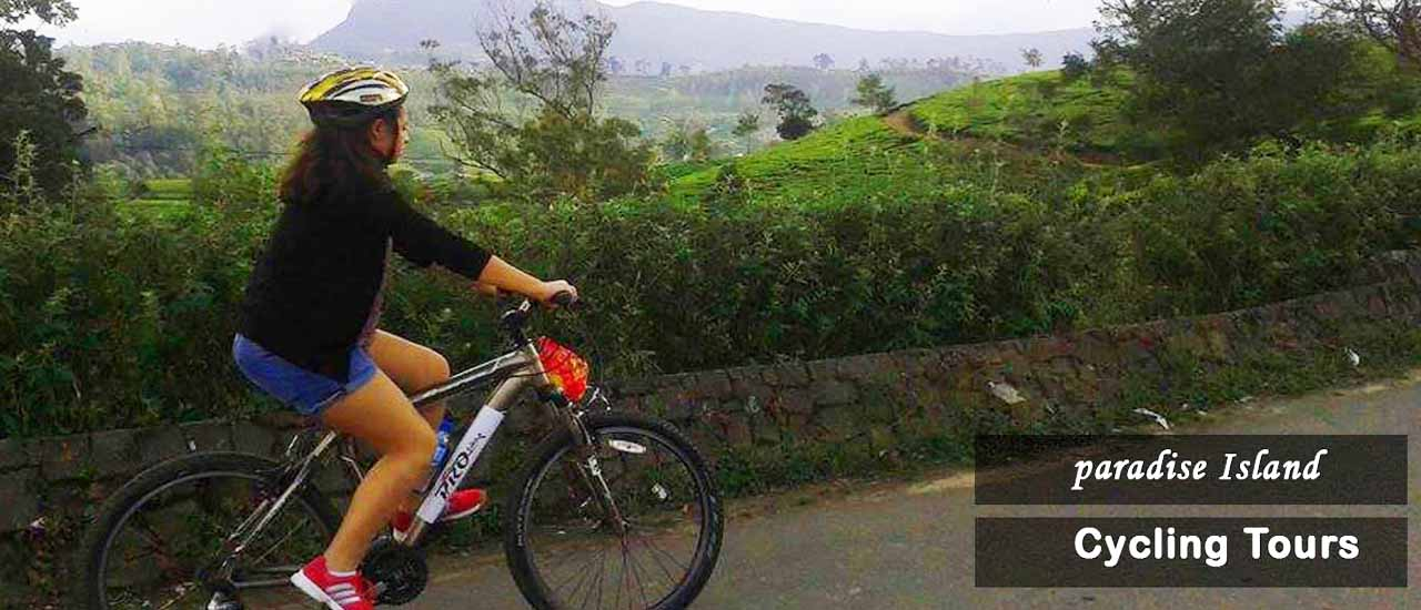 Cycling Tour Kandy to Ambekke Temple|Kandy BikeTour| Things to Do in Kandy| Day Tour in Sri Lanka | Cycling Tour in Sri Lanka|Cycling Escapes Sri Lanka